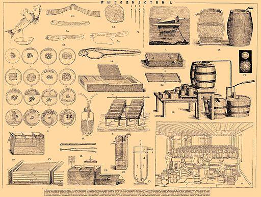 Brockhaus and Efron Encyclopedic Dictionary b53 416-1