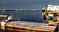 Bronnøysund harbour.jpg