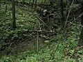 Bubovice-Srbsko - panoramio (55).jpg