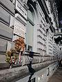 Budapest Terror Haza Muzeum-Hosok fala 20131201 02.jpg