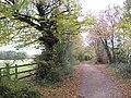 Bull's Green, Track to Back Lane - geograph.org.uk - 1559903.jpg