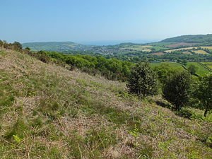 Bulverton - Image: Bulverton from Fire Beacon Hill