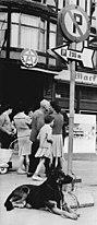 Bundesarchiv Bild 183-84461-0001, Straßenszene.jpg