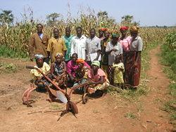 Grupo de agricultores de Tarfila.