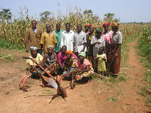 Burkina Faso - Tarfila Farming Group