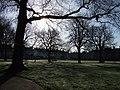 Bury Meadow, Exeter - geograph.org.uk - 372250.jpg