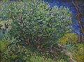 Bush Van Gogh IMG 7269.JPG