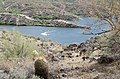 Butcher Jones Trail to Pinter's Point Loop, Tonto National Park, Saguaro Lake, Ft. McDowell, AZ - panoramio (119).jpg