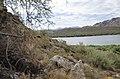 Butcher Jones Trail to Pinter's Point Loop, Tonto National Park, Saguaro Lake, Ft. McDowell, AZ - panoramio (90).jpg