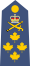 CDN-Air Force-Gen-Shoulder.svg