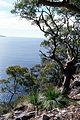 CSIRO ScienceImage 68 View From West Head.jpg