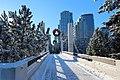 Calgary new years walk round 2014 (11694443175).jpg