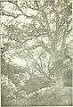 California country journal (1903) (20512361555).jpg