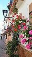 Calle Papuecas pink flowers - Estepona Garden of the Costa del Sol.jpg