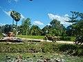 Cambodia 2014 - panoramio (8).jpg