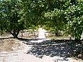 Caminho Eco - panoramio.jpg