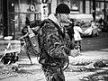 Camouflage (29635885).jpeg