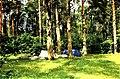 Camp of tourists on the island Kajosaari.jpg