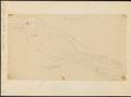 Caprimulgus ruficollis - 1700-1880 - Print - Iconographia Zoologica - Special Collections University of Amsterdam - UBA01 IZ16700041.tif