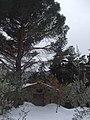 Casupola presso Polvano di sopra - panoramio.jpg