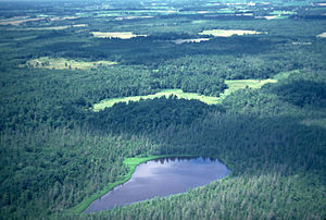 Cedar Creek Ecosystem Science Reserve - View of Cedar Bog Lake with experimental plots in the rear