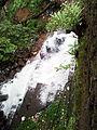 Cheeyappara Waterfalls down Adimaly kerala.jpg