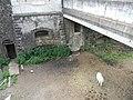 Cheval fossé Fort de Montcorin.JPG