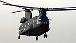 Chinook (5083455644).jpg
