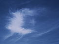 Cirrus cloud 1.jpg