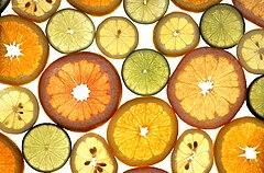 Penampang lintang buah berbagai jenis jeruk