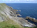 Cliffs at Sumburgh head - geograph.org.uk - 960833.jpg