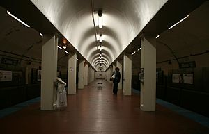 Clinton blue line station.jpg