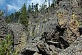 Columnar-jointed rhyolitic obsidian lava flow (Roaring Mountain Member, Plateau Rhyolite, Upper Pleistocene, ~59 ka; Obsidian Cliff, Yellowstone, Wyoming, USA) 34 (31877684557).jpg
