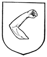 Fig. 262.—An arm embowed.