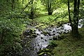 Confluence of Hurstwood Brook and Rock Water, forming the River Brun.jpg