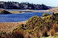 Connemara - Ballynahinch Lake off N59 - geograph.org.uk - 1622520.jpg