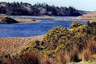 Ballynahinch Lake Lake in Galway, Ireland