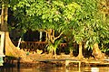 Corcovado National Park (8440028662).jpg