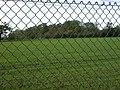 Corrie's Spinney - geograph.org.uk - 75308.jpg
