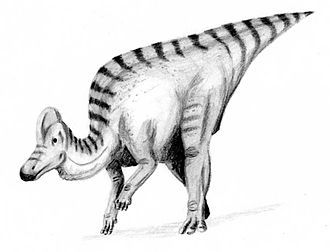 1914 in paleontology - Corythosaurus