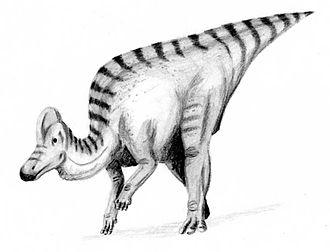 1914 in paleontology - Corythosaurus