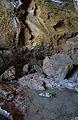 Cova Tallada, paret i bassa.JPG