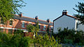 Cowesby Street and Community Allotment in Moss Side, Manchester, UK.jpg