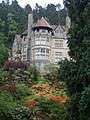 Cragside and Sloping Garden - geograph.org.uk - 576421.jpg