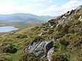 Craigenloch Hill above Loch Beanie - geograph.org.uk - 236682.jpg