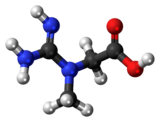 Ball and stick model of creatine