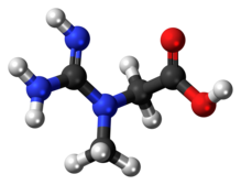 Creatine molecule ball.png