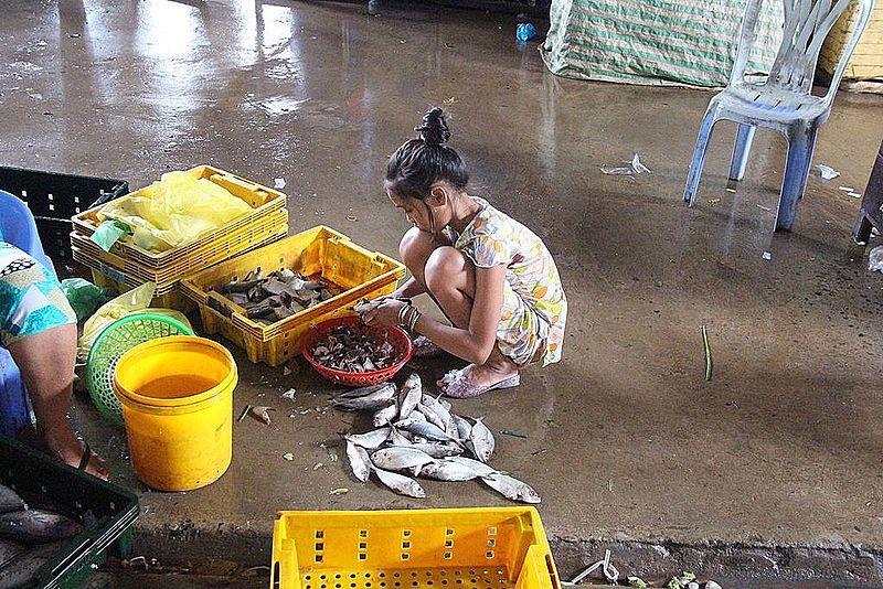 File:Crouching girl cleaning fish on market Vietnam.jpg Description English: Crouching girl cleaning fish on market in Vietnam Nederlands: Hurkende meisje maakt vis schoon op een markt in Vietnam