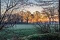 Dülmen, Dernekamp, Sonnenaufgang -- 2021 -- 6948.jpg