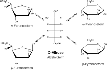 D-Altrose-Aldehyd-Pyranose-Furanose.png